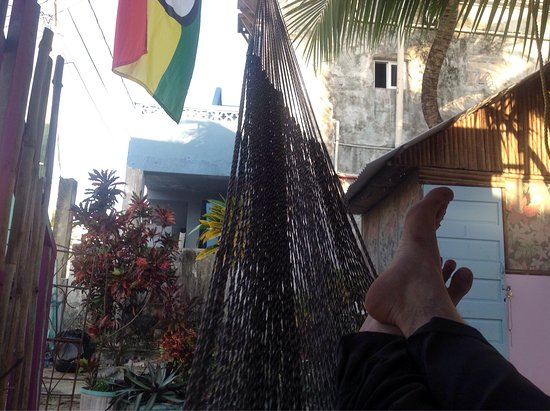 Tropical Oasis Hostel: Hanging out