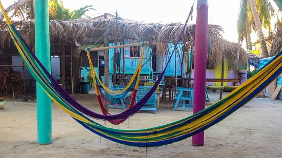 Tropical Oasis Hostel: Good times had by all. Go slow, but go to tropical oasis!