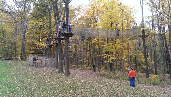 Eagle Creek Park: Adventure activities by Go Ape (from April to October)