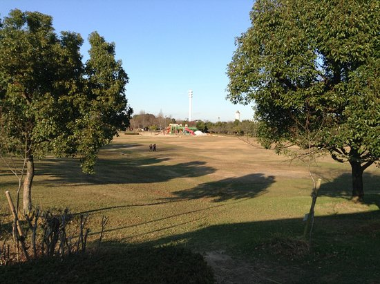 Aichi Fitness Forest Park