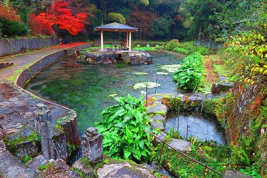 Hongu Izumi Spring