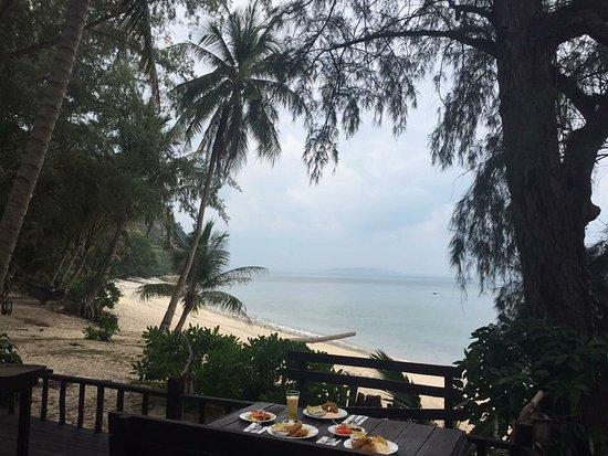 Rimba Resort: photo3.jpg