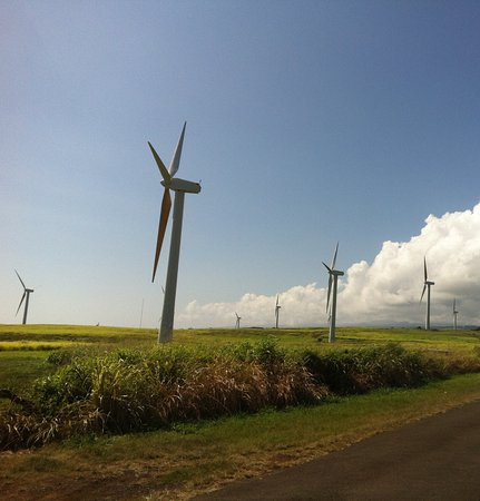 Hawi, HI: The wind turbines at Upolo Point, Big Island, Hawai'i