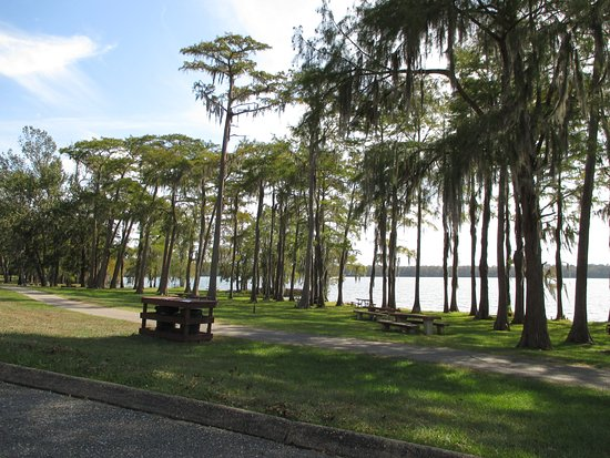 Florala, AL: Just some of the picnic facilities