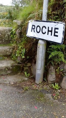 Roche, UK: The steps leading in