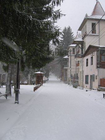 Baile Tusnad, Rumania: Street on the left side of the hotel