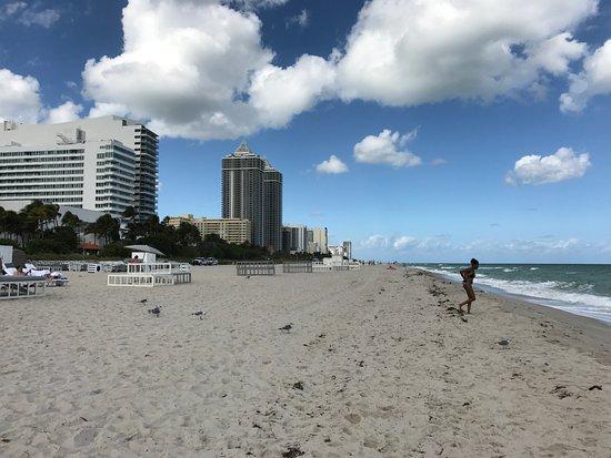 Fontainebleau Miami Beach Strand