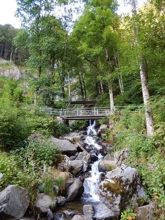 Todtnau, Niemcy: Cascadas
