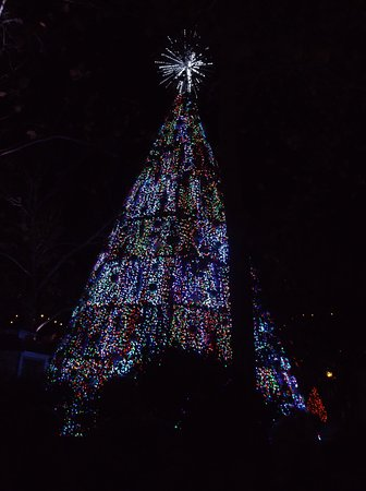 "Branson, Missouri: The best part!!!! Lights ""dancing"" to music"