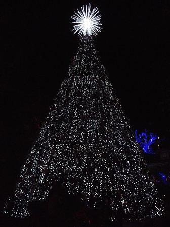 Branson, Missouri: Near the entrance. A lit Christmas tree.