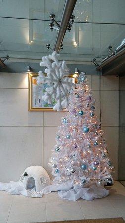 Drogheda, Irlanda: White Christmas tree just inside porch