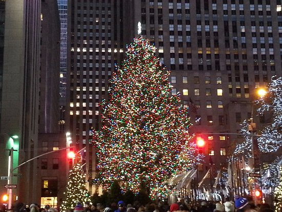 2016 Rockefeller Center Christmas Tree Side Photo - Rockefeller ...
