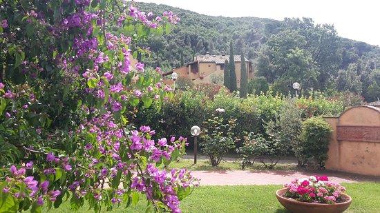 Il Casale Del Madonnino: Blick vom Gelände in die Umgebung von Iano