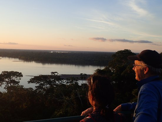 Napo Cultural Center: activity: view from a tower we paddled and walked to