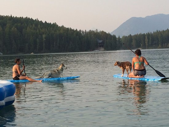 Lake Five Resort: One of the many reasons why the dogs love Lake Five!