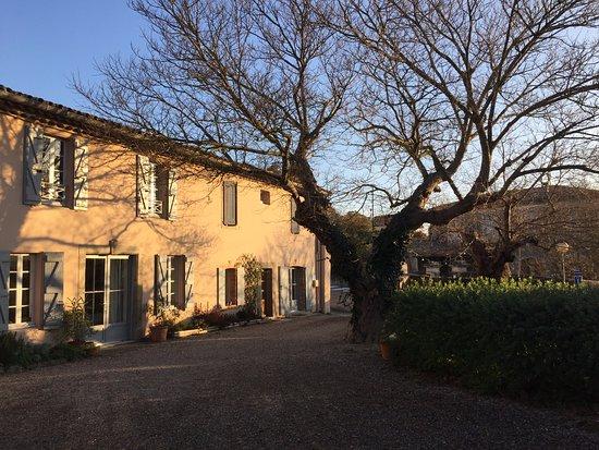 Domaine de Fontète : Cortile