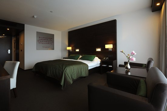 Sassenheim, เนเธอร์แลนด์: Onze zeer ruime kamer