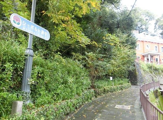 Siebold Street