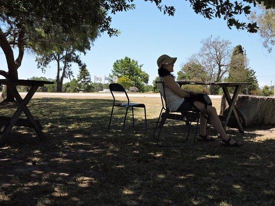 Granja Colonia : Para disfrutar el aterdecer