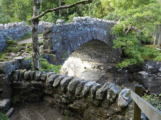 Invermoriston Falls: Thomas Telford Bridge