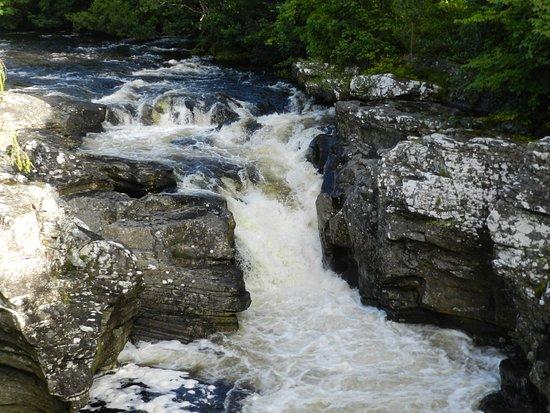 Invermoriston, UK: The falls; pretty but small