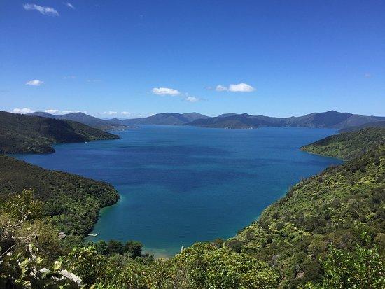 New Zealand South Island Hiking Trip Advisor
