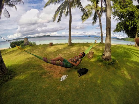 Banana Island: hammock