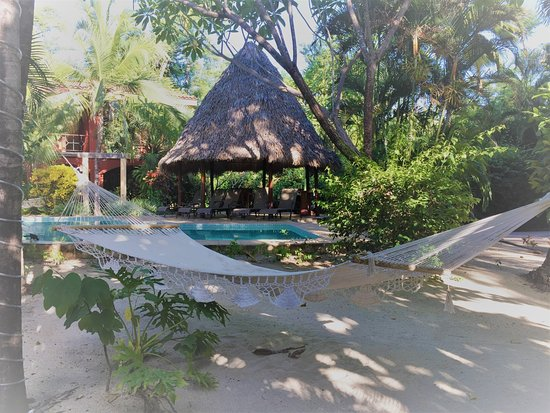 Playa Grande, Costa Rica: Mucha cercania a la playa!