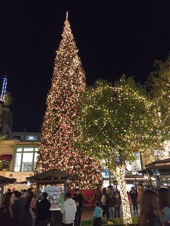 Huge Christmas tree at The Grove & Huge Christmas tree at The Grove - Picture of The Grove Los ... azcodes.com
