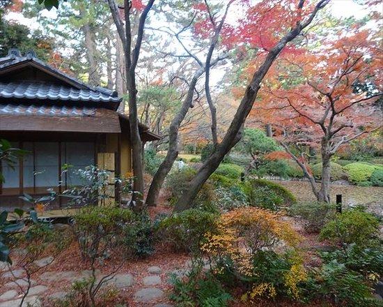東京都庭園美術館, 茶室です。