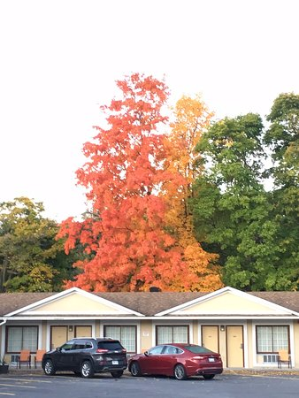 Super 8 Brockville: Beautiful fall day!