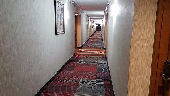 Englewood, Ohio: Hallway at Best Western Plus Dayton Northwest