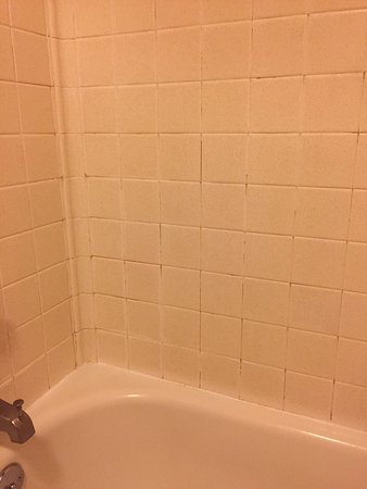 Halsey, OR: A bit more care on removing the scum on the grout. Bed is a bit hard but room is clean. The ligh