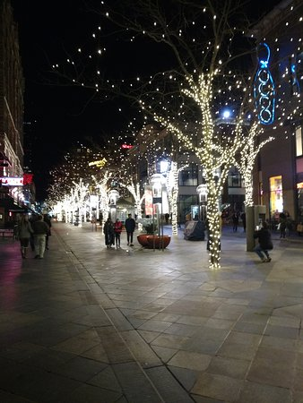 beautiful lights for christmas - picture of 16th street mall