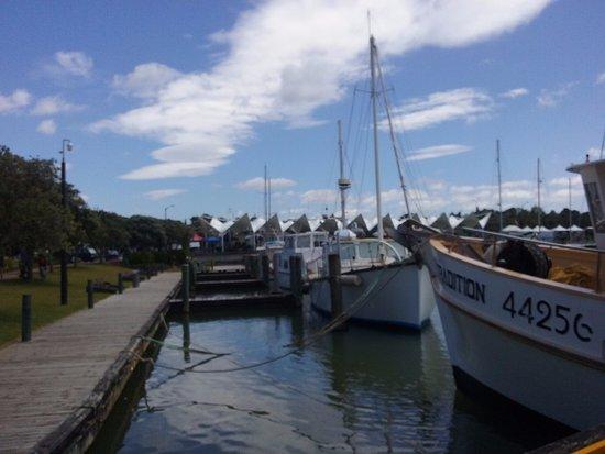 Whangarei, Nueva Zelanda: Lots of interesting boats to stroll past