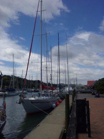 Whangarei, New Zealand: Fabulous marina
