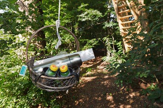 Sainte-Catherine-de-Fierbois, Fransa: Petit déjeuner en cabane dans les arbres