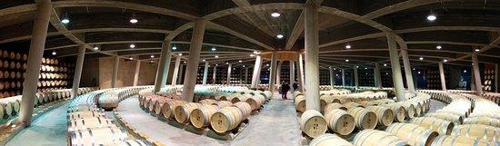 Laguardia, Spanien: Bodegas Viña Real