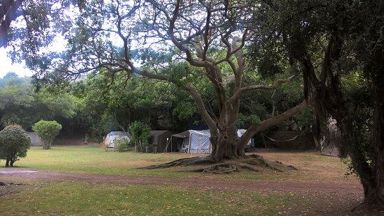 lake pleasant resort updated 2018 campground reviews price