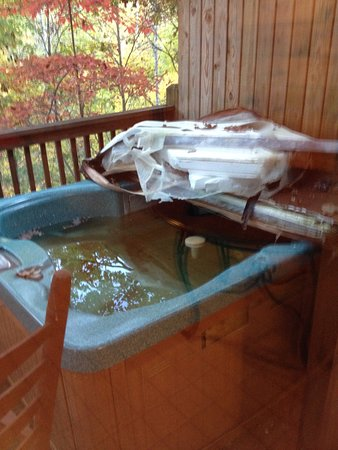 My Cabin Vacation: nice romantic hot tub
