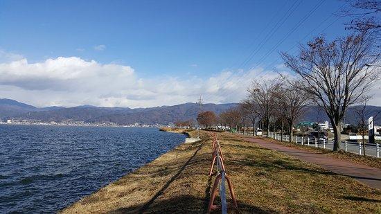 Prefectura de Nagano, Japón: 因冬天樹木蕭瑟