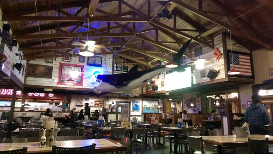Bellevue, KY: The interior with the giant shark