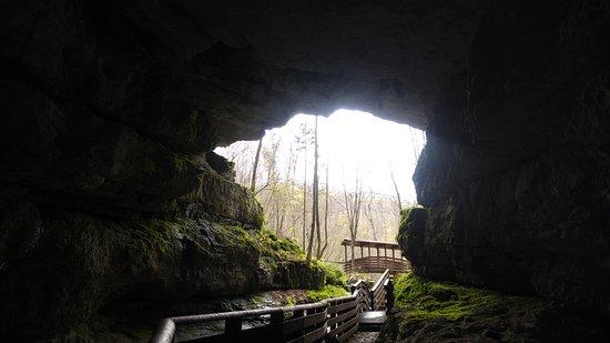 Grotta Abisso Vigant