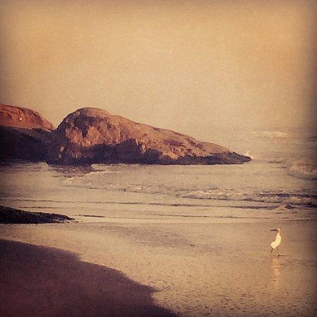 Laguna, SC: Praia do Iró