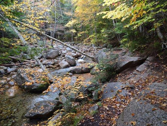 Conway, Nueva Hampshire: Sabbaday Falls