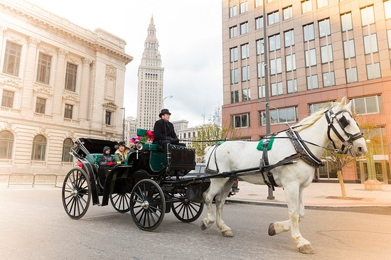 Carriage Ride in Cleveland