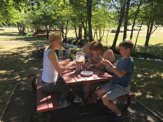 Mineral, CA: Picknick in Shingletown (auf dem Weg von Redding zum Lassen Volcanic N.P.)
