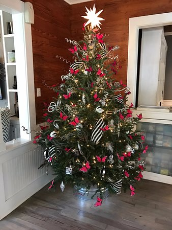 Alexander's Guesthouse: A Key West Christmas