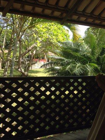 Pousada Jacaranda: Vista do Apartamento