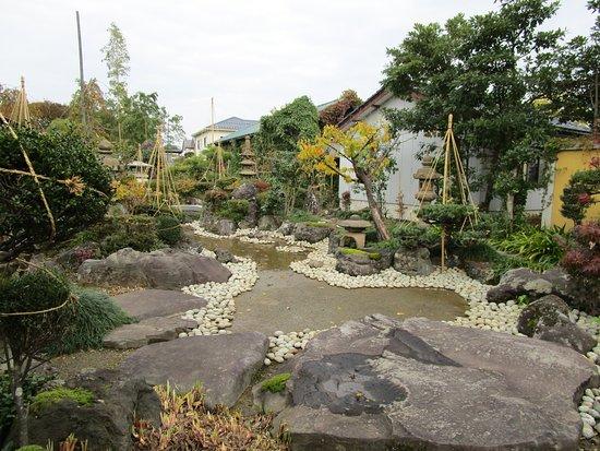 Hanabusa Syoyu